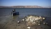 Perairan Galilee merupakan danau volkanik yang memiliki luas 166,7 kilometer persegi. Kedalamannya 43 meter. Airnya mengalir ke Sungai Yordania.