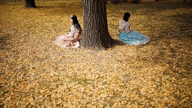 Orang Korea menyebut musim gugur dengan sebutan Cheon-go-mabi.
