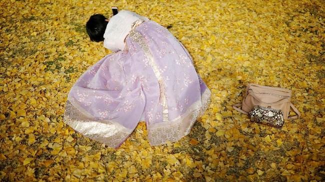 Musim gugur juga dikenal sebagai musim panen yang melimpah, di antaranya panen padi, ubi, buah apel, buah persik, dan buah Jujube.