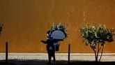Seorang perempuan mengunjungi pemakaman San Fernando saat digelarnya perayaan All Saints Day di Sevilla, Spanyol. (REUTERS/Marcelo del Pozo)
