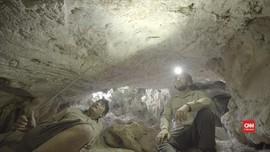 VIDEO: Lukisan Batu Tertua di Dunia Ditemukan di Kalimantan