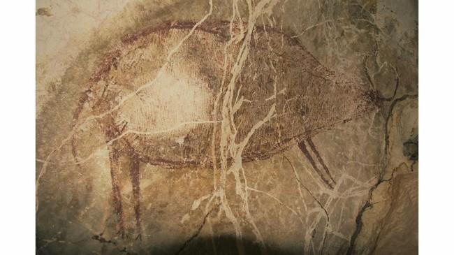 Gambar yang tertua adalah gambar seekor hewan yang tidak terindentifikasi, kemungkinan dia merupakan spesies banteng liar yang hingga kini masih ditemukan di kedalaman hutan Kalimantan(Arkenas/Pindi Setiawan)