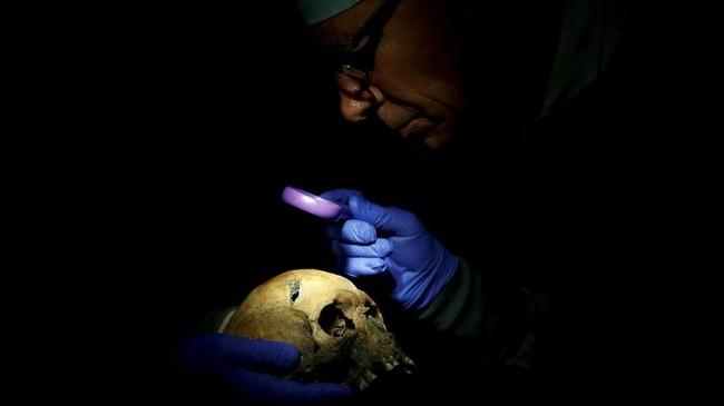 Ahli patologi forensik Perancis Bruno Fremontmengerjakan identifikasi sisa tengkorak tentara yang tidak diketahui, yang terbunuh selama Perang DuniaI. (REUTERS/Christian Hartmann)