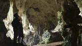 Tim peneliti gabungan dari Pusat Penelitian Arkeologi Nasional (ARKENAS), ITB dan Griffith University Australia mengungkap penemuan lukisan hewan abstrakdi sebuah gua Kalimantan.(Arkenas/Kinez Riza)