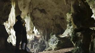 Ekowisata Kalimantan, Cara Pelesir Asyik di Paru-paru Dunia