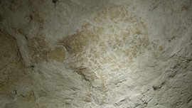 Peneliti Ungkap Fakta Lukisan Batu Tertua Ada di Kalimantan