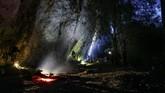 Penampakandi sekitar gua Karst di Semenanjung Sangkulirang-Mangkalihat, Kalimantan Timur.(Arkenas/Pindi Setiawan)