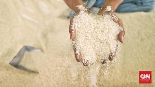 Sri Mulyani Tunggu Titah Airlangga Bayar Beras Buangan Bulog