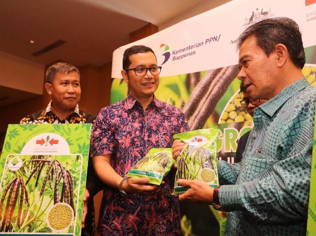 Ewindo mentargetkan produksi VIMA 1 pada 2023 sebesar 1800 ton guna meningkatkan produktivitas petani kacang hijau nasional hingga hampir dua kali lipat atau 1,76 ton/ha sekaligus membantu penyediaan sumber gizi yang lebih baik sehingga dapat menurunkan angka stunting di Indonesia. Istimewa.