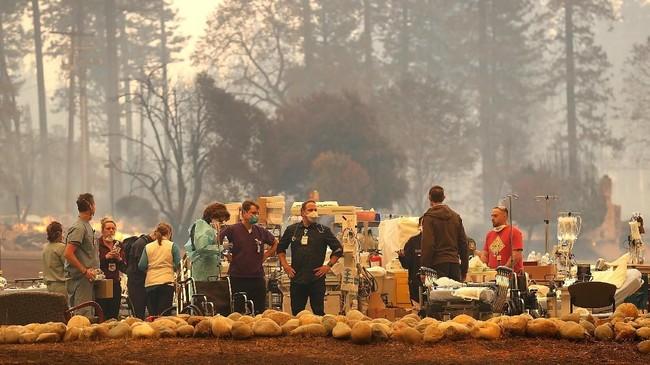 Tiupan angin membuat api merambah dari Kota Pulga ke Kota Concow hingga Kota Paradise yang memiliki sedikitnya 26 ribu penduduk itu. Kota tersebut terletak sekitar 136 kilometer dari utara Sacramento. (Justin Sullivan/Getty Images/AFP)