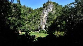 Longsor di Toraja Sebabkan Akses Jalan Putus