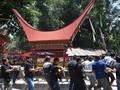 Magnet Jokowi di 'Lovely Desember' Toraja
