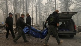 Korban Tewas Kebakaran Hutan California Menjadi 42 Orang