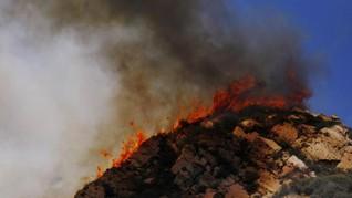 Kebakaran Hutan, Ribuan Warga Australia Dievakuasi