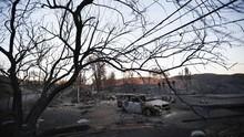 Korban Tewas Kebakaran Hutan California Hampir 50 Orang