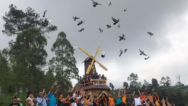 Destinasi Digital Peken Edelweis Ramaikan Pariwisata Bali
