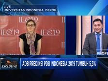 Ekonomi Indonesia Versi Ekonom ADB
