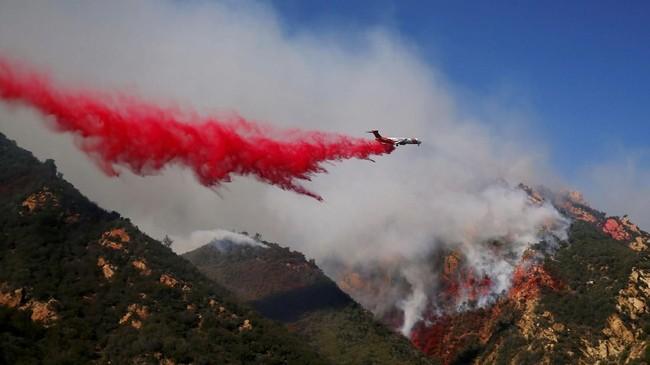 Kebakaran hutan terus menjalar di California, Amerika Serikat, hingga menewaskan 31 orang terhitung sampai Minggu (11/11). (Reuters/Eric Thayer)