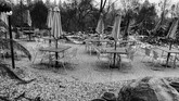 Ratusan ribu penduduk terpaksa mengungsi untuk menghindari kebakaran hutan, termasuk para pesohor Amerika Serikat. (REUTERS/Sharon Bernstein)