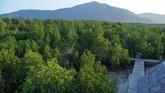 Kawasan Hutan Mangrove, Karimunjawa, Jepara, Jawa Tengah.Karimunjawa yang dikenal dengan pantai mempesona itu merupakan salah satu Kawasan Strategis Pariwisata Nasional (KSPN) yang diproyeksikan bisa menyedot minat wisatawan mancanegara.
