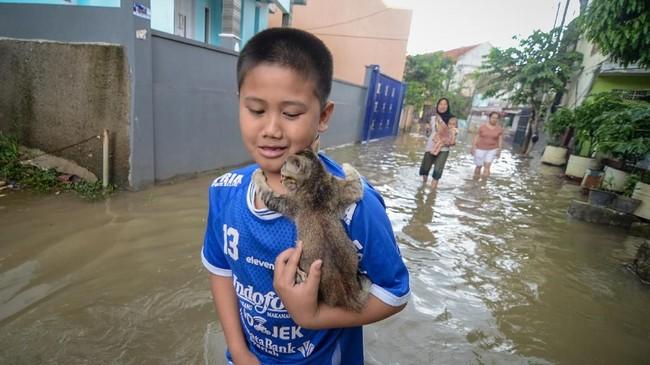 Seorang anak menyelamatkan anak kucing saat banjir yang melanda Kampung Bojong Asih, Dayeuhkolot, Kabupaten Bandung, Senin (12/11/2018). ANTARA FOTO/Raisan Al Farisi/pras.