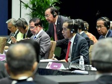 Temui Putin, Jokowi Minta Rusia Dukung CPO dan Buah Tropis RI