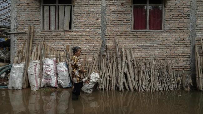 Sebanyak 2.707 rumah di Kabupaten Cilacap, terdampak banjir dengan ketinggian mencapai 70cm akibat cuaca ekstrim yang memicu curah hujan dengan intesitas tinggi selama dua hari terakhir. ANTARA FOTO/Idhad Zakaria