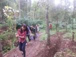 978 Ribu Ha Lahan Hutan Produksi Disebar ke Masyarakat