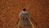 Seorang anak menaiki tangga di taman yang tertutup daun musim gugur di Srinagar, Kashmir. (Reuters/Danish Ismail)