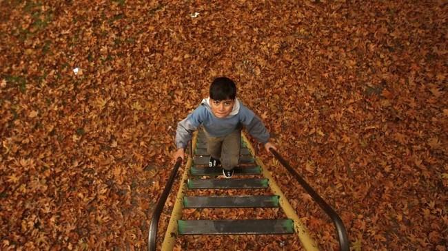NYALANG: Helai Jingga Menutup Musim