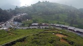 Kawasan puncak merupakan jalur utama yang menghubungkan Cianjur (Jawa Barat) dengan kawasan Kabupaten Bogor. Sebelum ada Tol Cipularang, ini pun menjadi jalur utama transportasi Jakarta-Bandung. (ANTARA FOTO/Yulius Satria Wijaya)