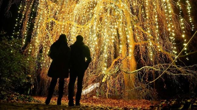 Biaya untuk menikmati gemerlap lampu di taman ini sekitar 19 euro atau sekitar Rp314 ribu.