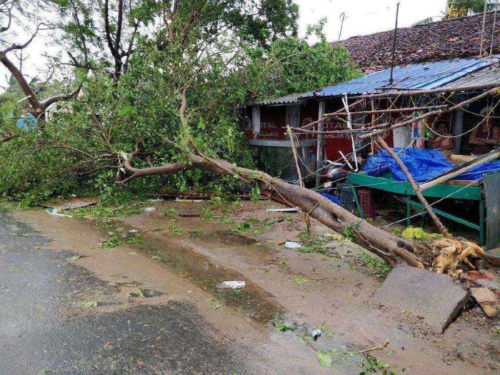 Dilansir dari AFP News, topan itu memiliki kecepatan mencapai 120 kilometer (75 mil) per jam. Angin kencang itu pun menghancurkan rumah dan menumbangkan sejumlah pohon.