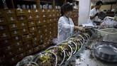 Wang Zhenyi, seorang ahli kesehatan di RS Yueyang, mengibaratkan obat tradisional sebagai 'lukisan'. Sementara obat modern diibaratkannya dengan 'fotografi' yang telah memiliki standar-standar tertentu. (Photo by Johannes EISELE/AFP)
