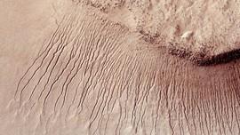 NASA Ajak Warga Bumi 'Setor' Nama untuk Misi Mars 2020