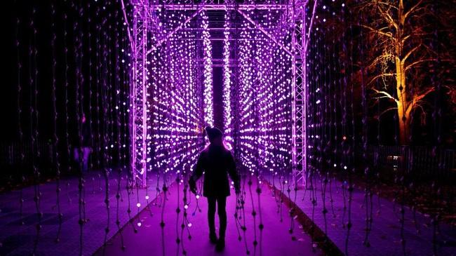 Tahun ini adalah kali keenam bagi Kew Gardens diterangi oleh cahaya-cahaya yang banyak membuat orang terpukau.