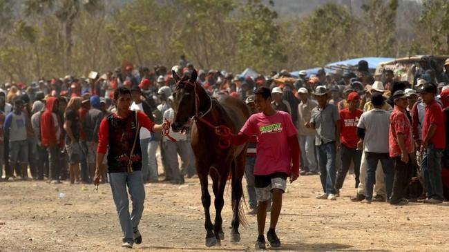 Warga mempersiapkan kudanya untuk mengikuti lomba pacuan kuda tradisional.