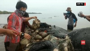 VIDEO: Laut Indonesia Dihadang Sampah Plastik