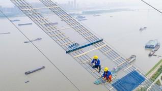 Ribuan Ikan Langka Mati, China Hentikan Pembangunan Jembatan