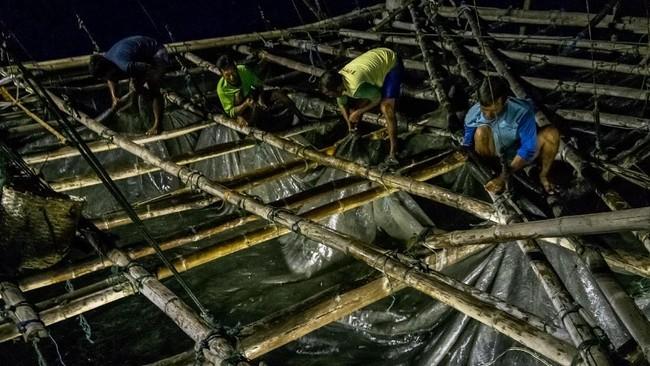 Sejumlah buruh nelayan bergotong royong menarik jaring bagan apung di perairan Demak, Jawa Tengah. (ANTARA FOTO/Aji Styawan)