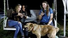 Instagram Uji Fitur Khusus untuk 'Influencer' dan 'Seleb'