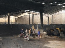 Batu Bara Indonesia Kini Jadi 'Korban' Eksploitasi Berlebihan