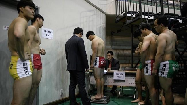 Di Korea Utara, perkembangan ssireum dipimpin oleh Kim II Sung yang membentuk departemen khusus untuk olahraga pada 1946. (Photo by Ed JONES / AFP)