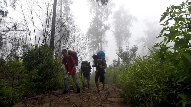 Sejumlah pendaki melewati Alas Lali Jiwo dalam pendakiannya menuju puncak.