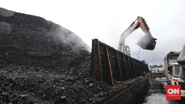 Pemerintah Harus Antisipasi Penurunan Ekspor Batu Bara