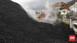 Genjot Produksi, PTBA Bangun Pelabuhan Batu Bara Baru