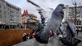 Burung-burung merpati terbang mendekati gerbang masuk stasiun kereta Marksistskaya di Moskow. (Photo by Yuri KADOBNOV / AFP)