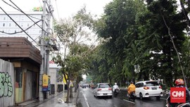 Surabaya Raih Adipura Kencana, JK Puji Wali Kota Risma