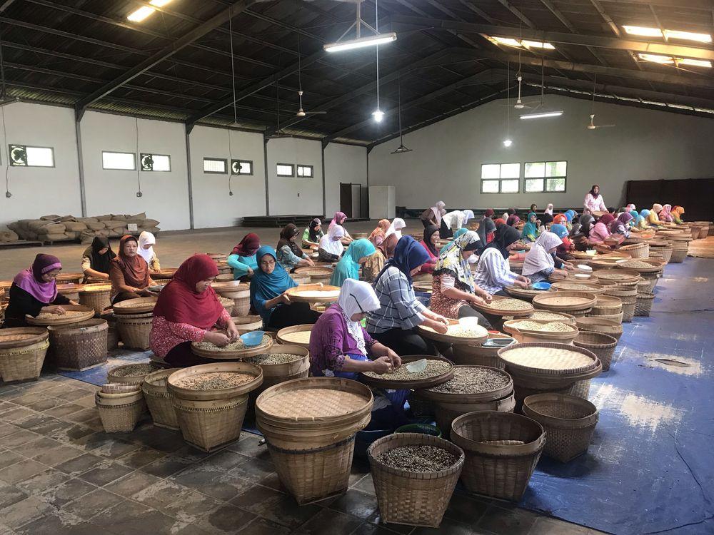 Berada di kawasan daerah Semarang terdapat salah satu agrowisata yang usianya cukup tua yakni 107 tahun. Adalah Kampoeng Kopi Banaran yang masih bertahan diantara pabrik-pabrik kopi modern yang semakinmenjamur di Indonesia. (CNBC Indonesia/Lynda Hasibuan)
