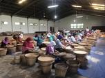 Berkunjung ke Kampoeng Kopi Berusia Seabad di Semarang